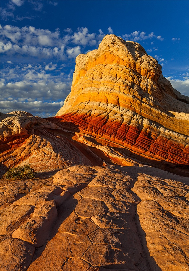 Volute, White Pocket, Parc National de Vermillion Cliffs - Arizona