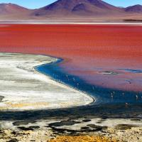 Lagune colorée, Uyuni - Bolivie