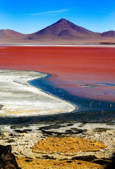 Lagune colorée, Bolivie