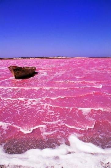 Le lac Retba - Senegal